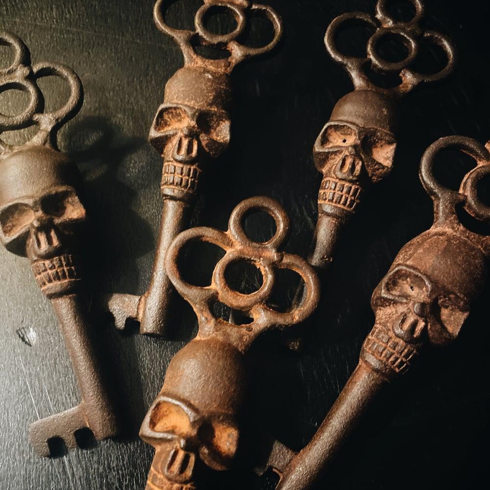 Image of Skull Skeleton Key