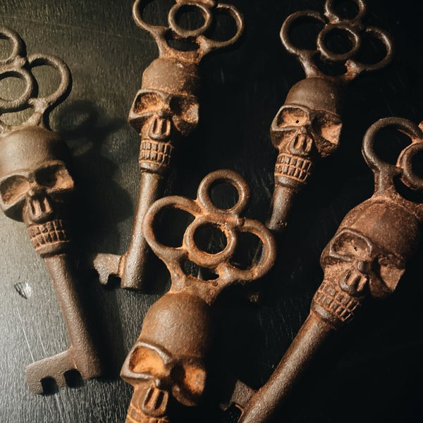 Image of Skull Skeleton Key