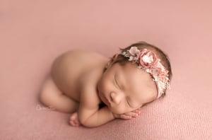 Image of Jordan Backdrop - Pink