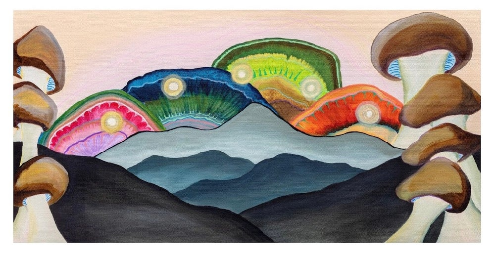 Image of Mountains, mushrooms, and moons