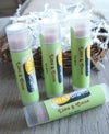ALL Natural Lip Balm-Lime and Cocoa-Sweet Beaks Collection-Rich Lip Protectant