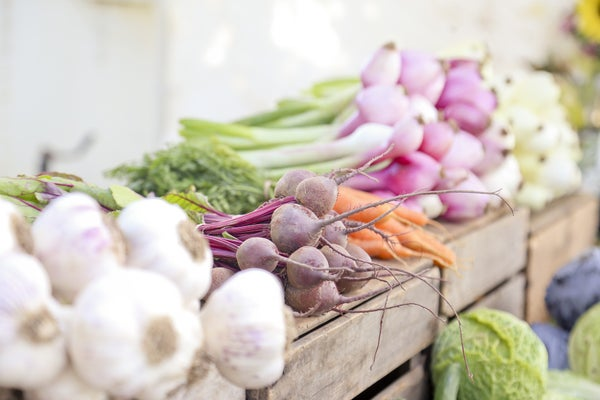 Image of Vegetable Seeds