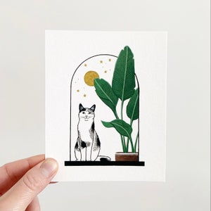 Image of Cats + Plants: White Bird of Paradise