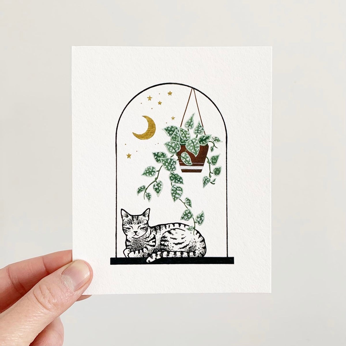 Image of Cats + Plants: Satin Pothos