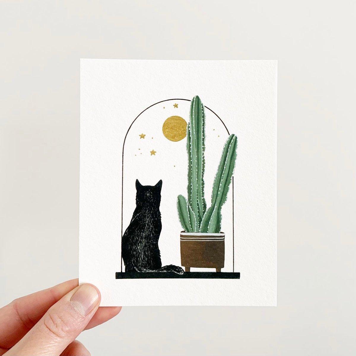 Image of Cats + Plants: Cereus Cactus