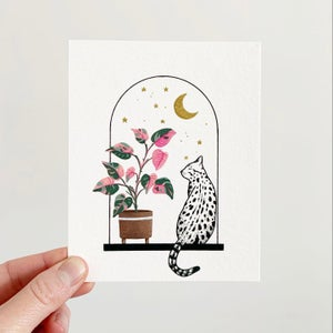 Image of Cats + Plants: Pink Princess Philodendron
