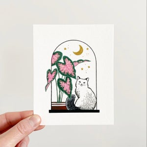 Image of Cats + Plants: Pink Caladium