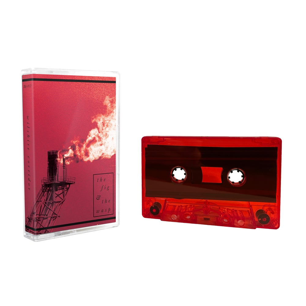 WILSHIRE CORRIDOR - The Fig & the Wasp  [cassette]