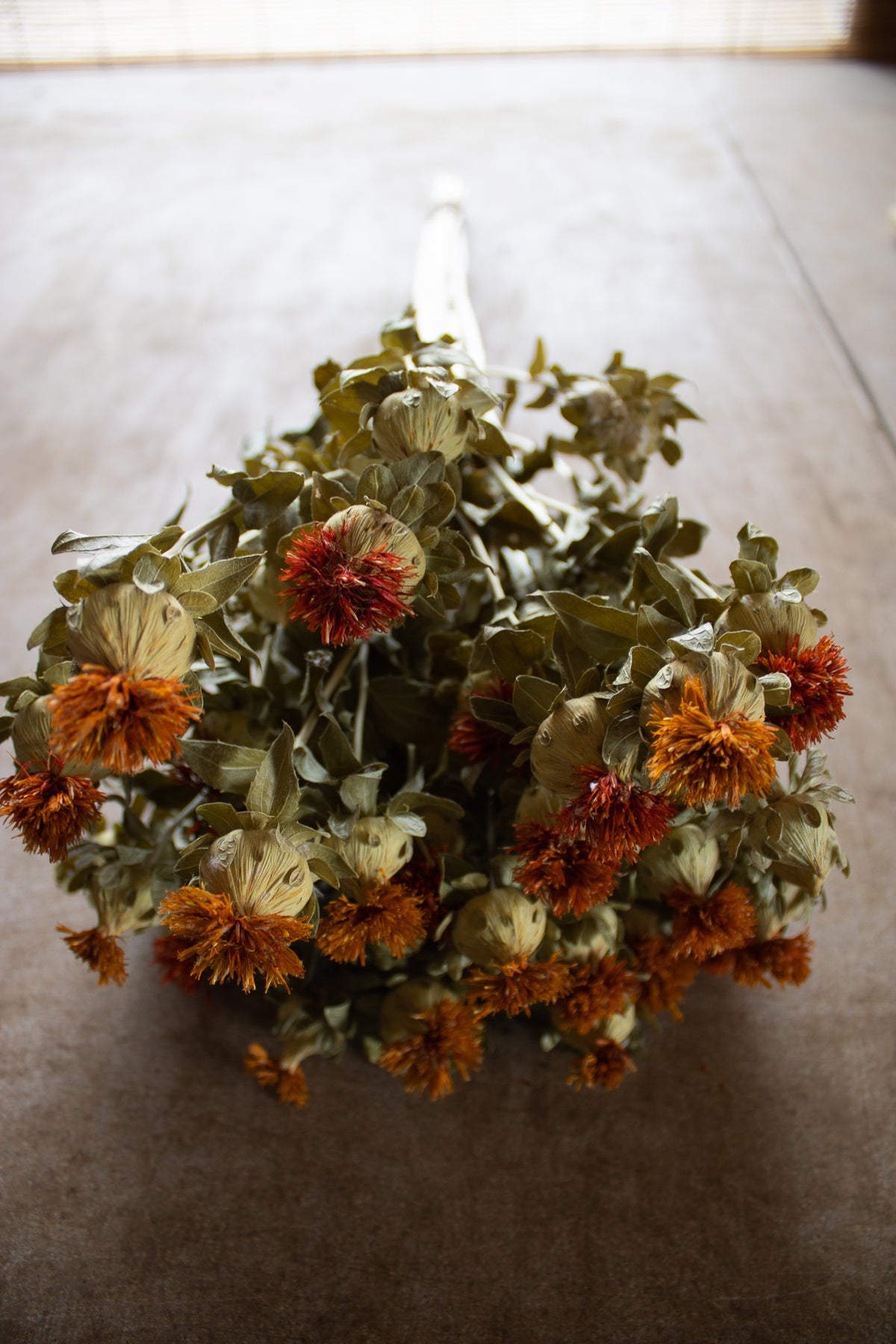 Image of Dried Flower Bulk Boxes
