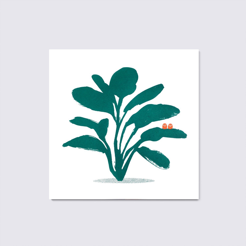 LITTLE PLANT 1