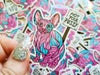 Sticker: Rude Cat - NOT YOUR PUSSY