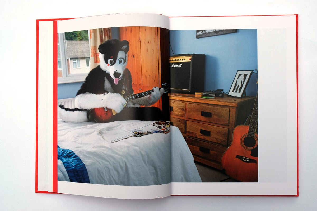 Image of At Home With The Furries by Tom Broadbent