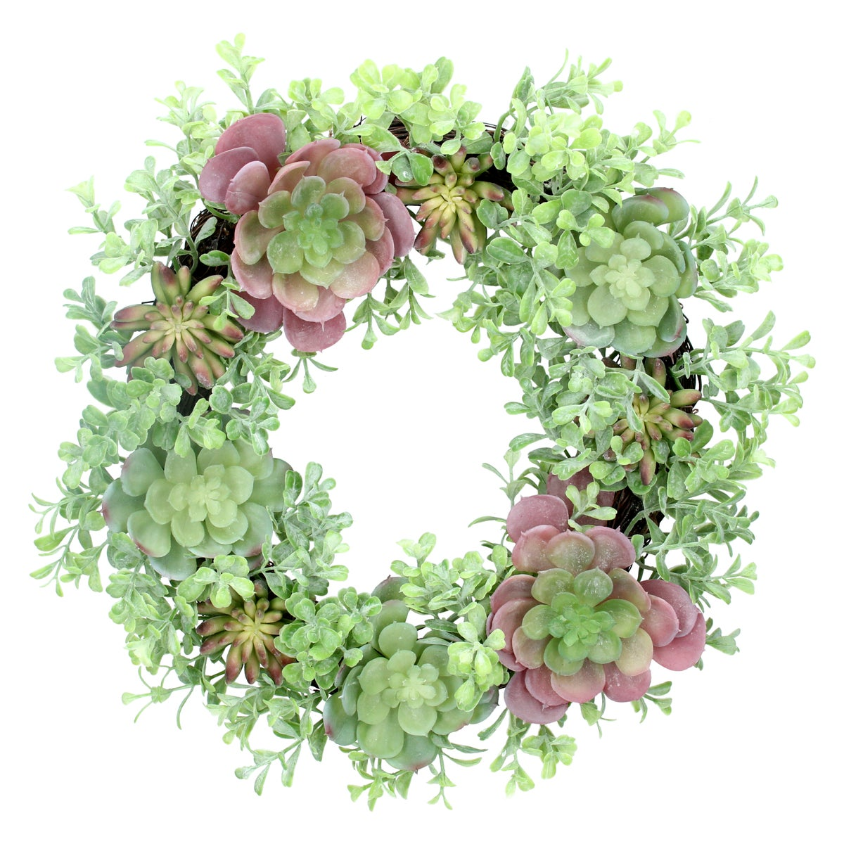 Image of Gisela Graham  Mixed Succulents Wreath 40cm