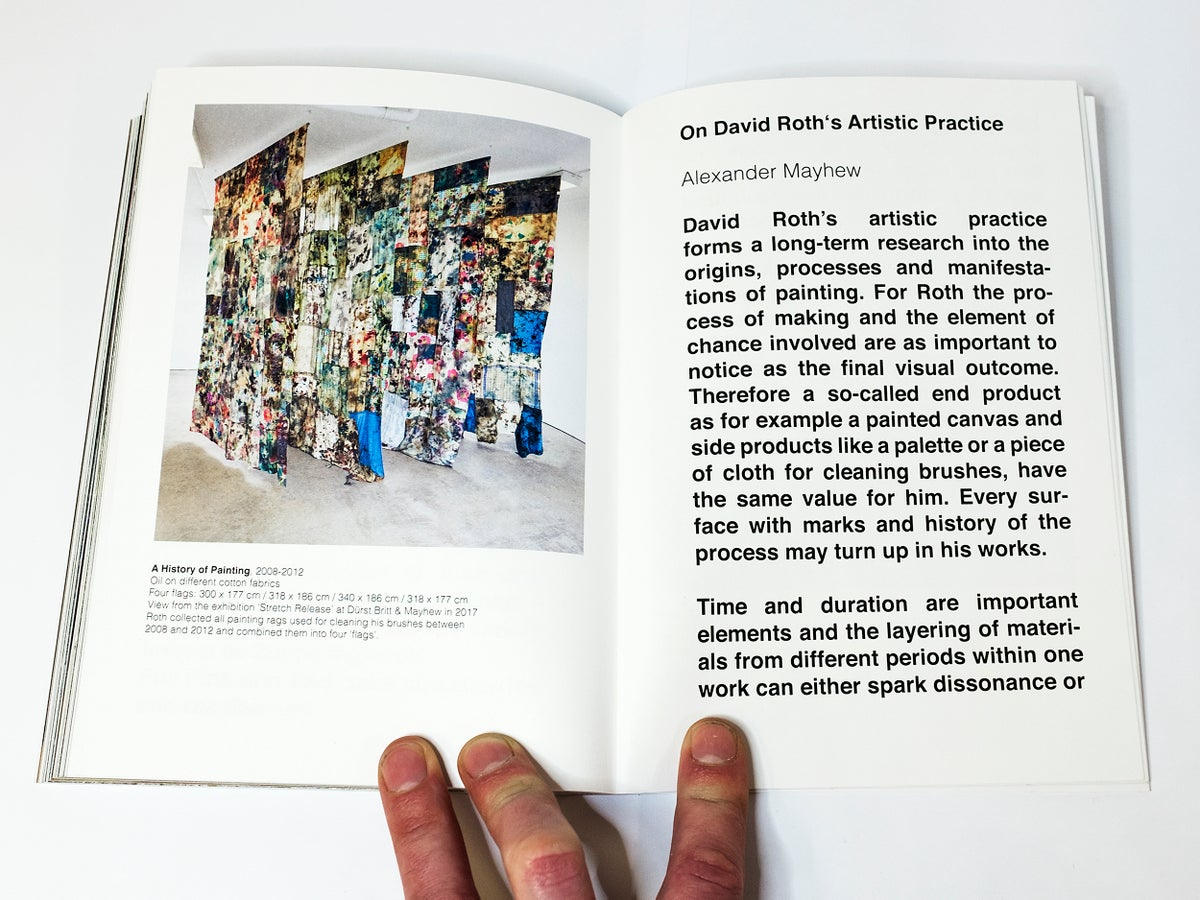 David Roth - An Introduction to Painting