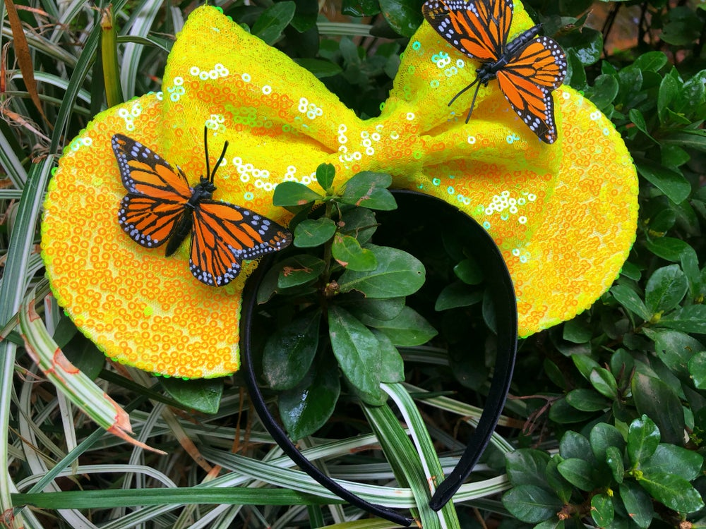 Image of Yellow iridescent spring butterfly mouse ears