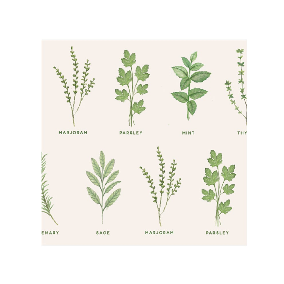 Image of Gisela Graham Pack Herb Garden Paper Napkins - 20
