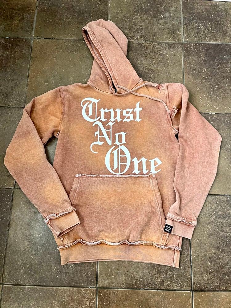 Image of Trust No One hoodies