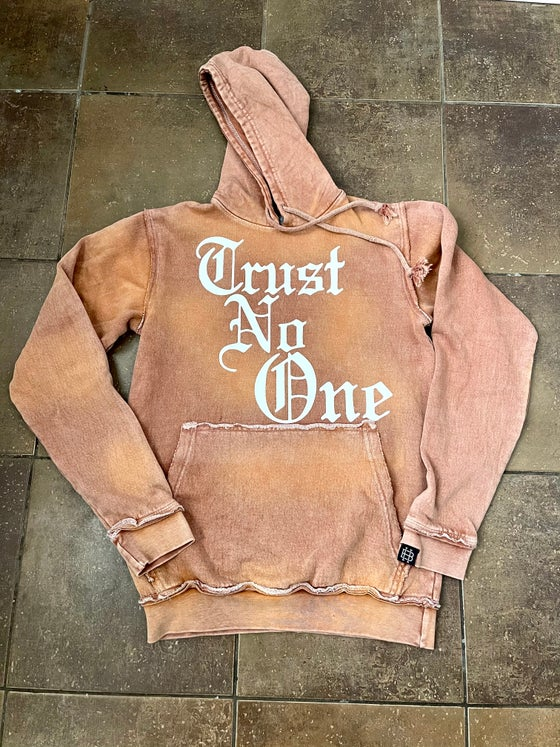 Image of Trust No One hoodies