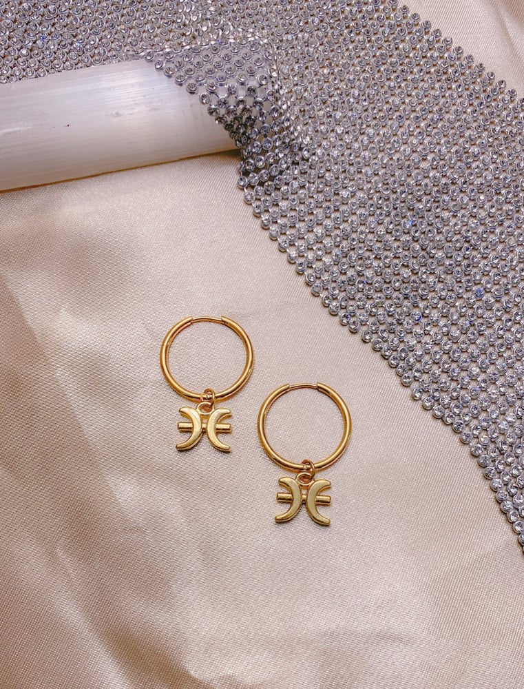 Image of The Zodiac Earrings
