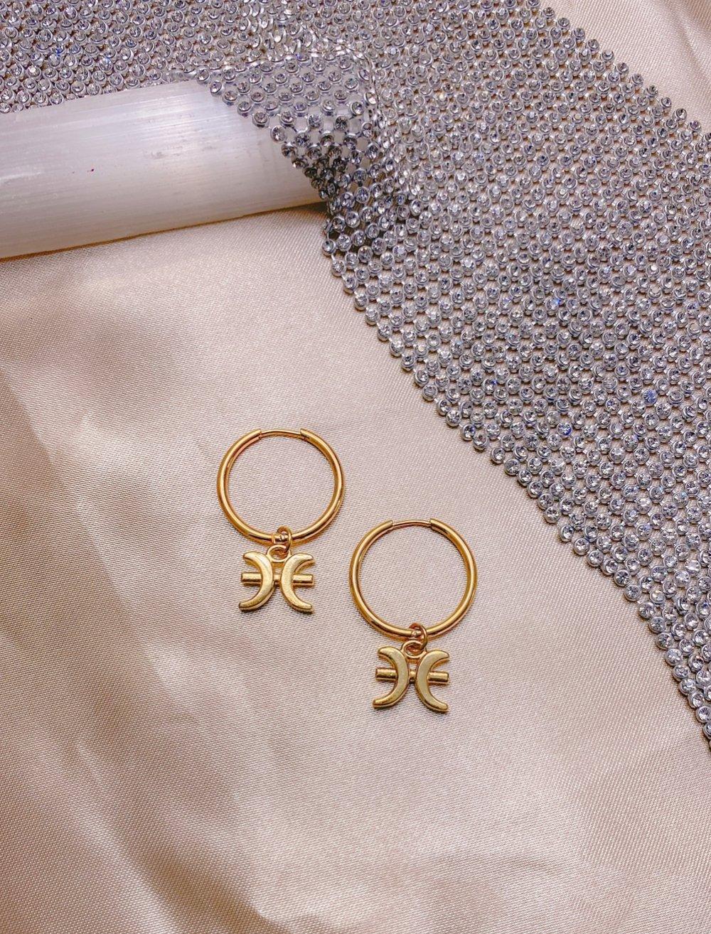 Image of The Zodiac Earrings
