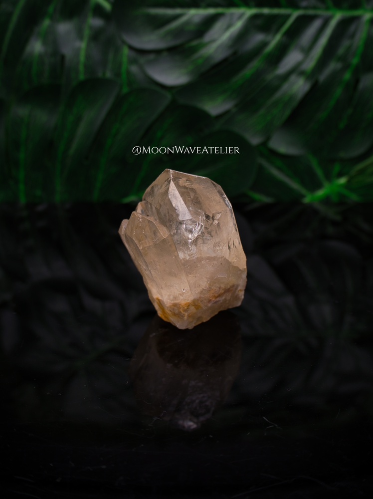 Image of Self Standing Citrine Point