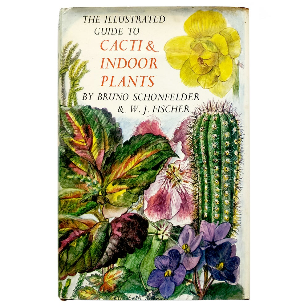 The Illustrated Guide to Cacti & Indoor Plants