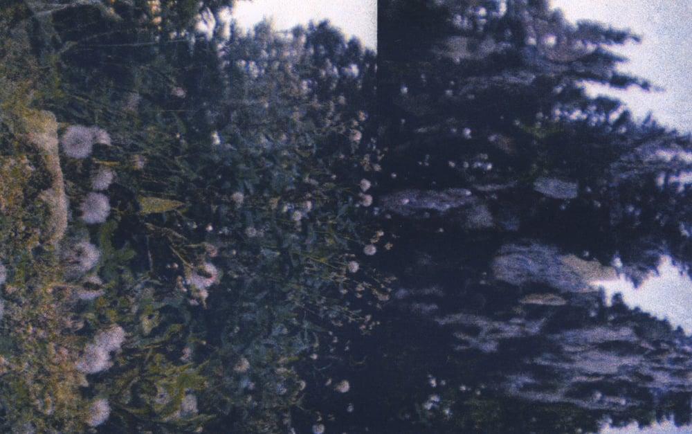 Image of Logan Creek