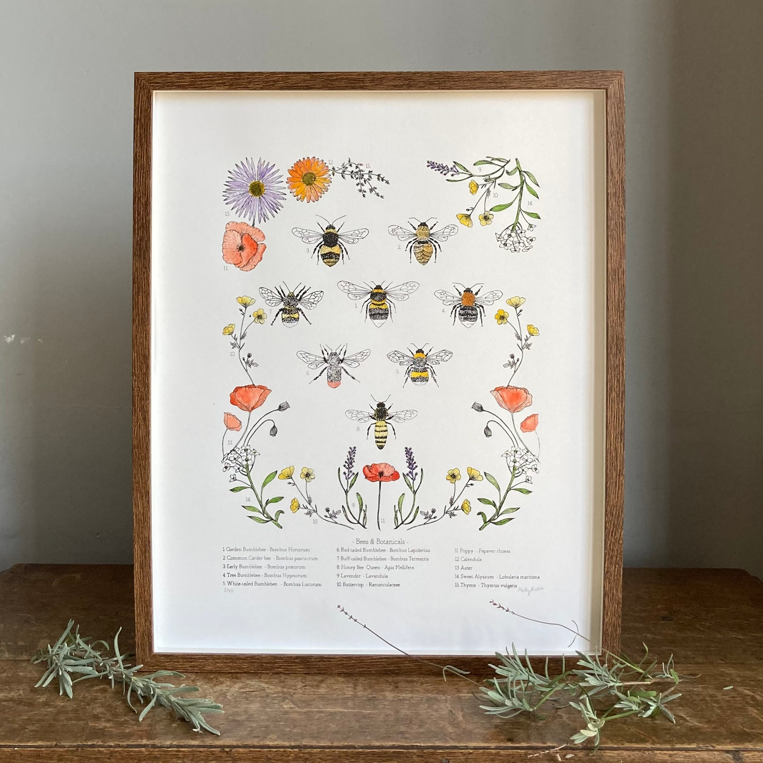 Image of Bees and Botanicals - silk screen print