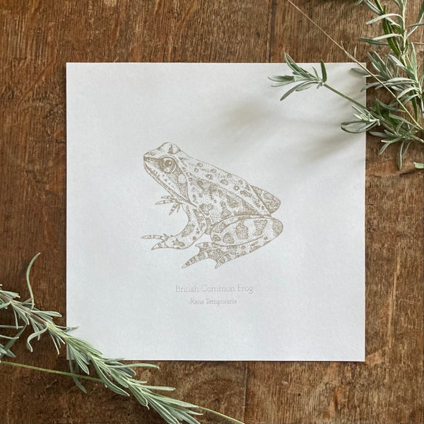 Image of Common Frog - silk screen print
