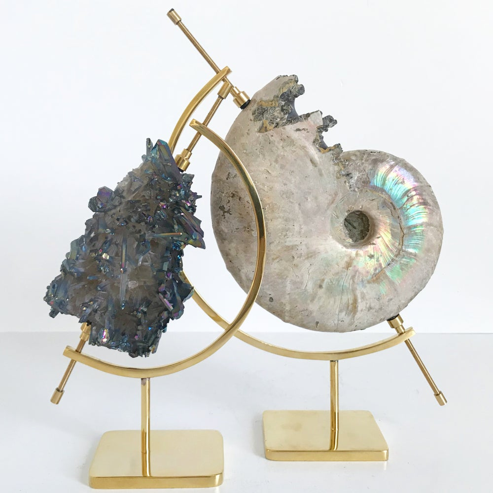 Image of Iridescent Rainbow Ammonite No.37 + Brass Arc Stand