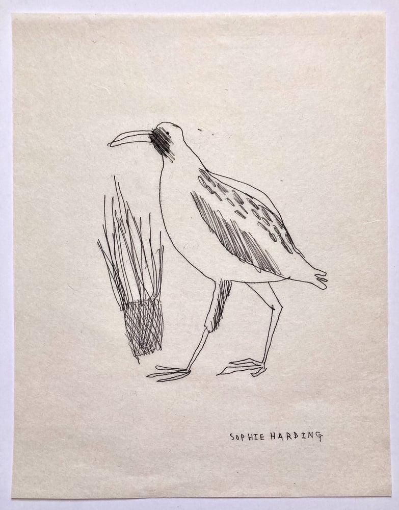 Image of Victorian Bird no.2 monotype