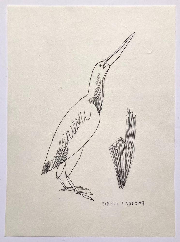 Image of Victorian Bird no.3 monotype