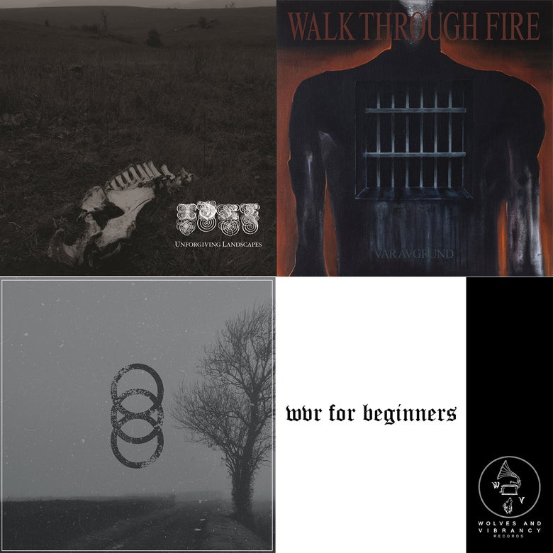 Image of WVR for beginners: Idre / HYOM / Walk Through Fire