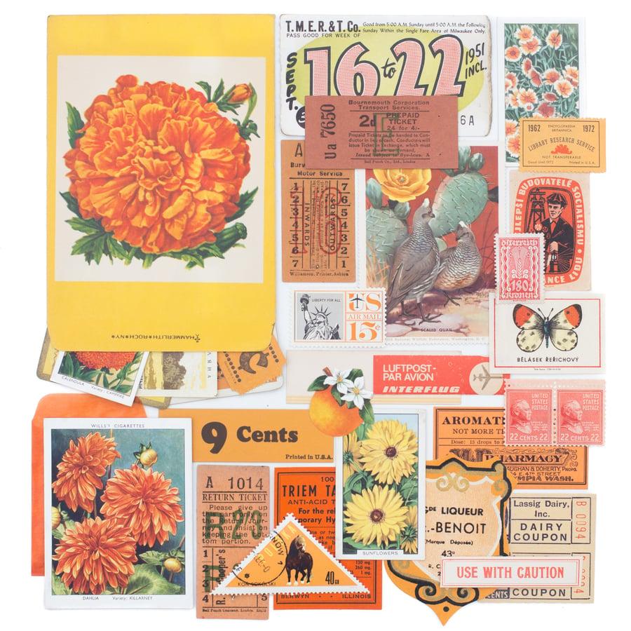 Image of Flower Seed Packet with Orange, Yellow, & Green Ephemera