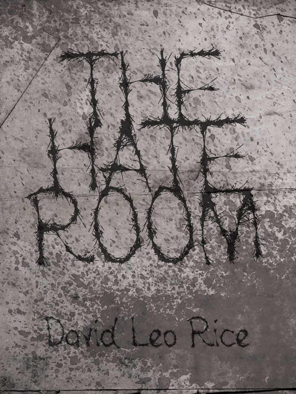 THE HATE ROOM CHAPBOOK by DAVID LEO RICE [OUT NOW!]