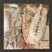Image of Gas Chamber & Black Iron Prison - Public Humiliation II LP