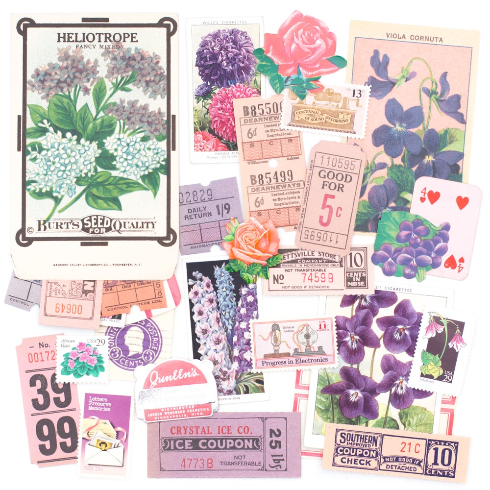 Image of Seed Packet with Pink & Purple Ephemera