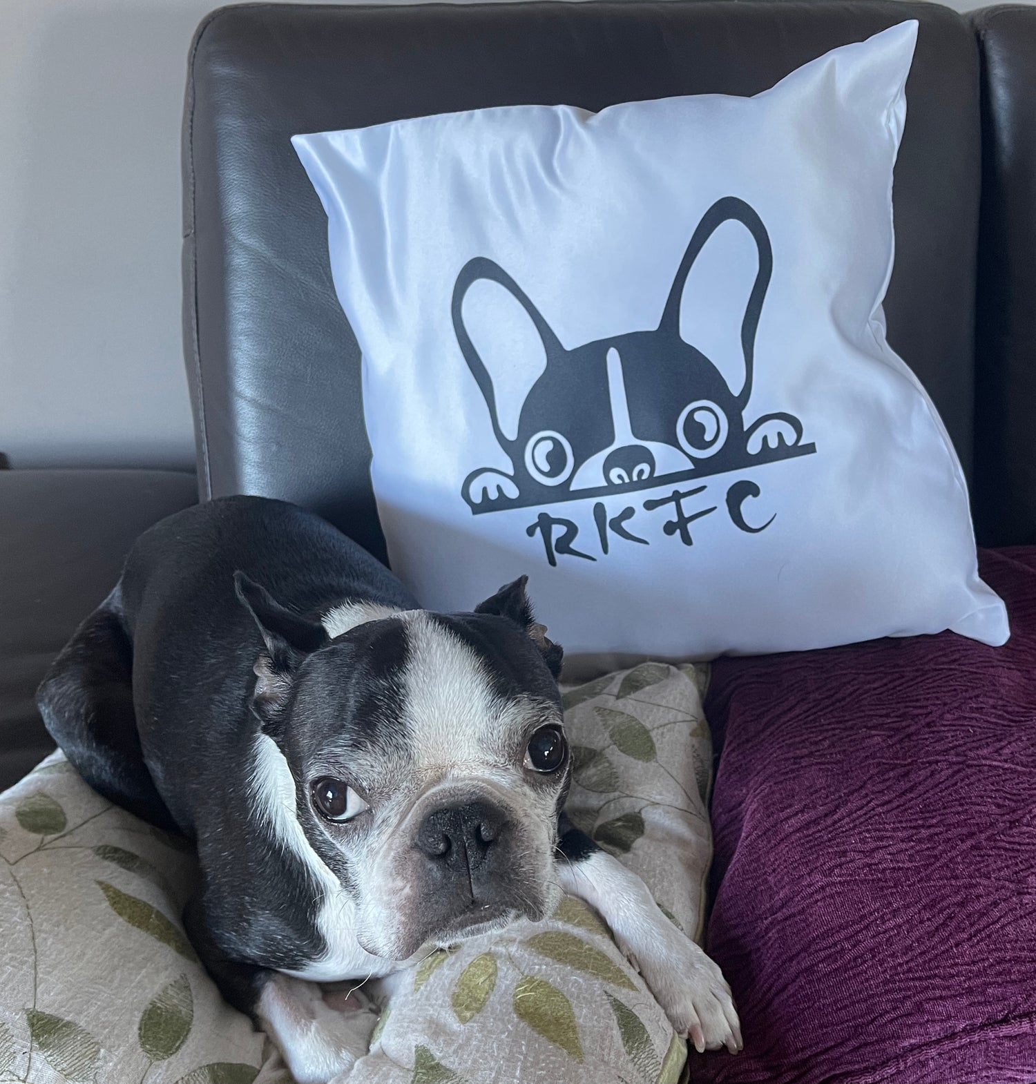 Image of RKFC Cushion Cover