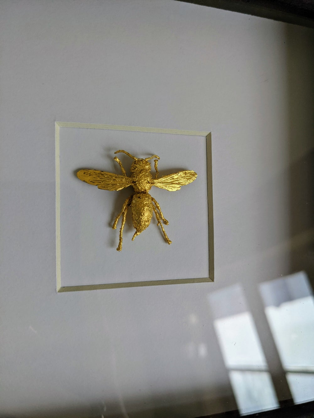 Gilded wasp