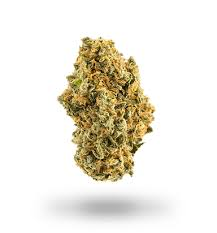 Image of Tangie - Sativa