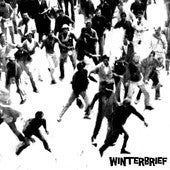 """Image of WINTERBRIEF - Guitar, Guitar (Limited 7"""" Vinyl EP)"""