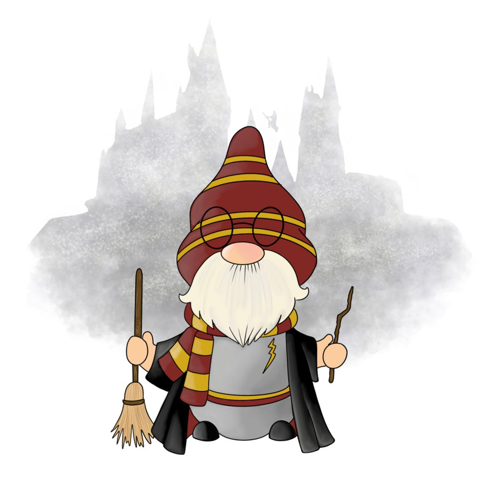 Image of Wizard Gnomes