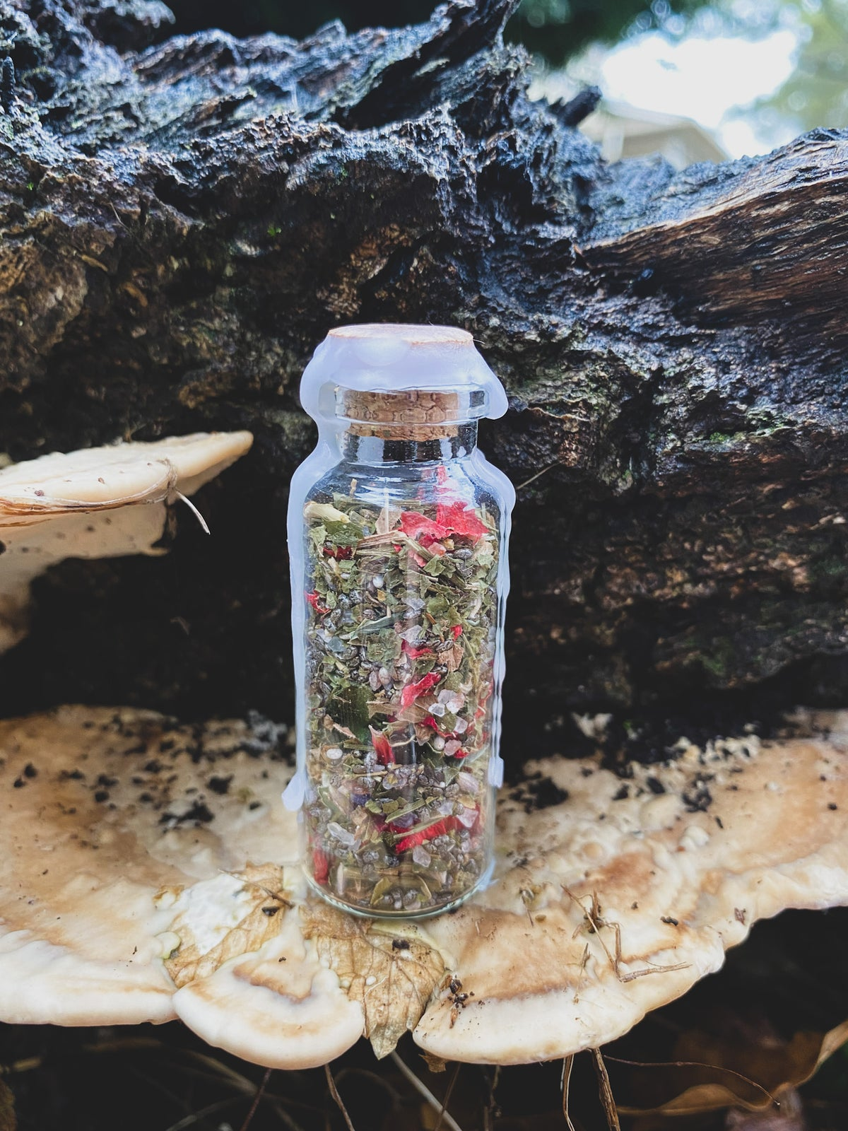 Image of Protection & Grounding Spell Jar