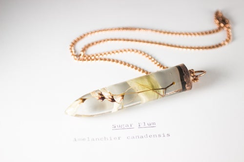 Image of Sugarplum (Amelanchier canadensis) - Large Copper Dipped Pendant