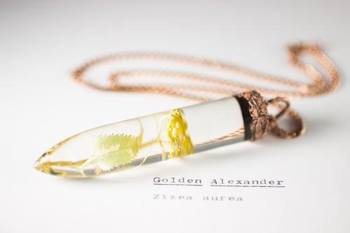 Image of Golden Alexander (Zizia aurea) - Large Copper Dipped Pendant #2