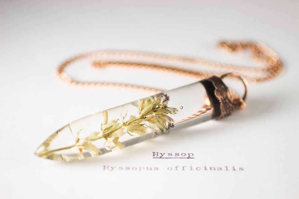 Image of Hyssop (Hyssopus officinalis) - Large Copper Dipped Pendant