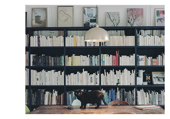 Carte Bibliothèque RDB