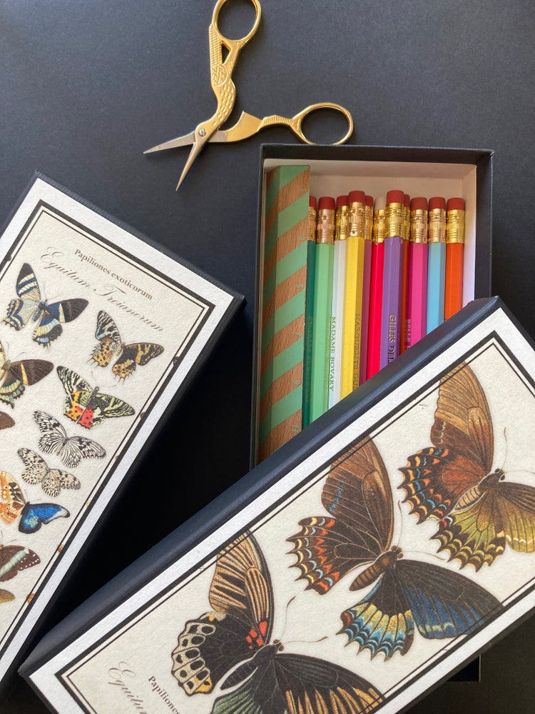 Image of PAPILLONS