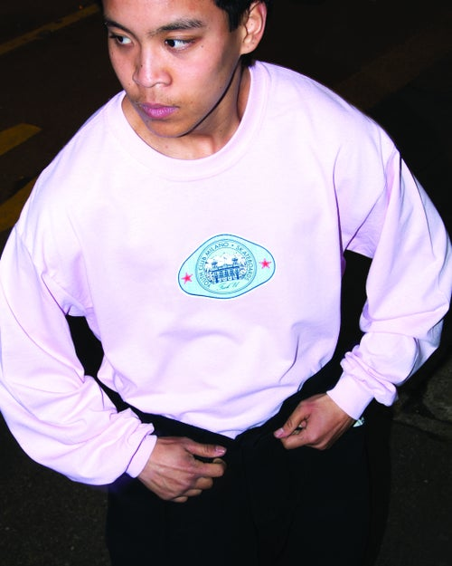 Image of Team L/S Tee / Pink