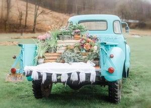 Image of Spring Truck minis